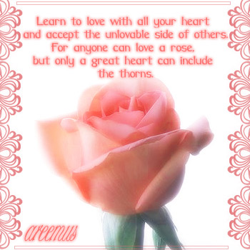 Learn to love......