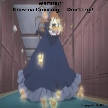 Brownie Crossing
