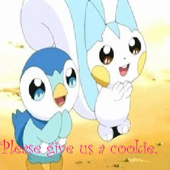Pachurisu and Piplup want a Cookie