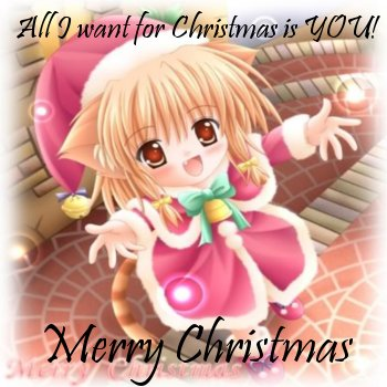 Christmas Wish