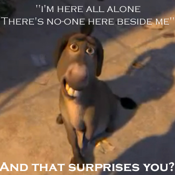 Donkey is alone