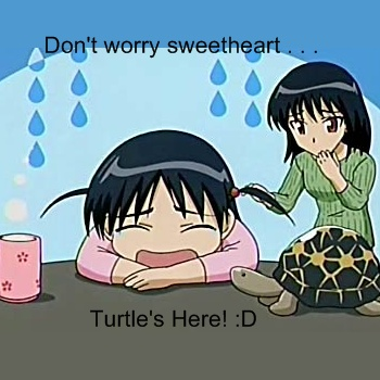 Turtles are a girl's best friend