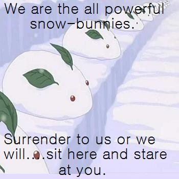 Beware the Snow Bunnies