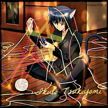 _+Ikuto Tsukiyomi+_