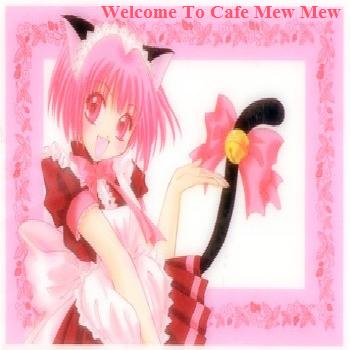 Welcome to cafe mew mew