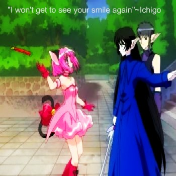 Mew Ichigo and Deep Blue Sama