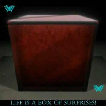 Life is a box of surprises